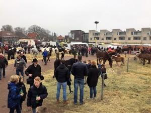 paardenmarkt4
