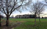 Zonnepark Waterlanden gaat er definitief komen