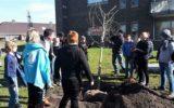 Kinderen planten bomen voor een groener Gijmink