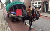 Reiziger Ruud strijkt neer in Goor…