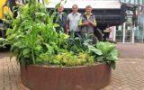 Eetbare groenbakken in Goors stadshart geplaatst