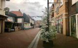Kerstbomen in Goors centrum