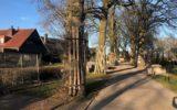 PvdA: Communicatie uitkomst GGD-rapport is ongenuanceerd