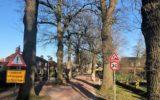 Actiecomite behoud Monumentale bomen stuurt GGD brief