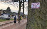 PvdA schakelt provincie in voor behoud bomen