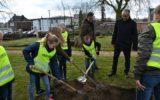 Leerlingen planten bomen op Thomas Ainsworth-begraafplaats