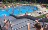 Zwem4daagse 'Down Under'