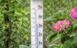 Het worden extreem warme Goorse zomerweken