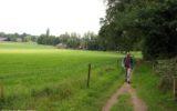 Archeologische wandeling op de Herikerberg