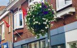Programma Hofkluis in de Reggehof voor extra bloembakken