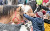 De Paardenmarkt in beeld…
