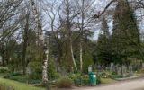 Algemene begraafplaats krijgt groene opknapbeurt