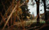 Zo mooi is de Goorse herfst… (10)