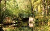 Zo mooi is de Goorse herfst… (1)