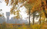 Zo mooi is de Goorse herfst… (11)