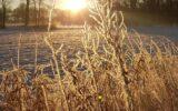 Hoe mooi was de Goorse winter…(13)