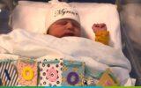 Myron Dijkstra 1000e baby MST