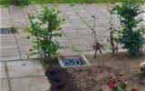 Plantendieven actief op 't Gijmink
